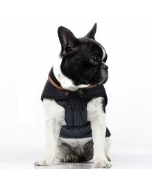 attachment-https://petsglamour.de/wp-content/uploads/2020/11/commodore-coat3.jpg